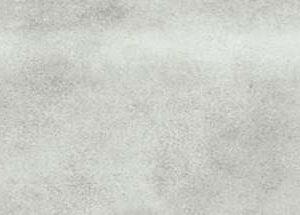 Bullnose Dove